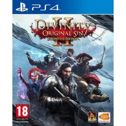 Divinity: Original Sin 2 Definitive Edition (PS4)